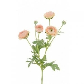 Ranunculus Spray Peach